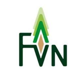 FVN Logo
